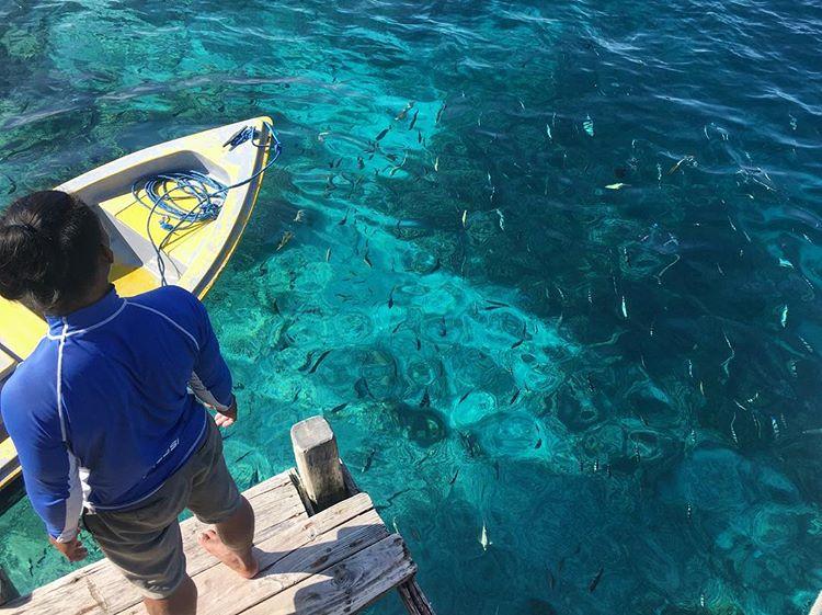 Pulau Kanawa sumber ig @litaaja
