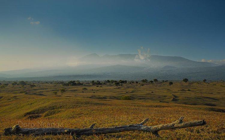 Gambar padang savana di Taman Nasional Gunung Tambora, sumber ig @visit_tambora