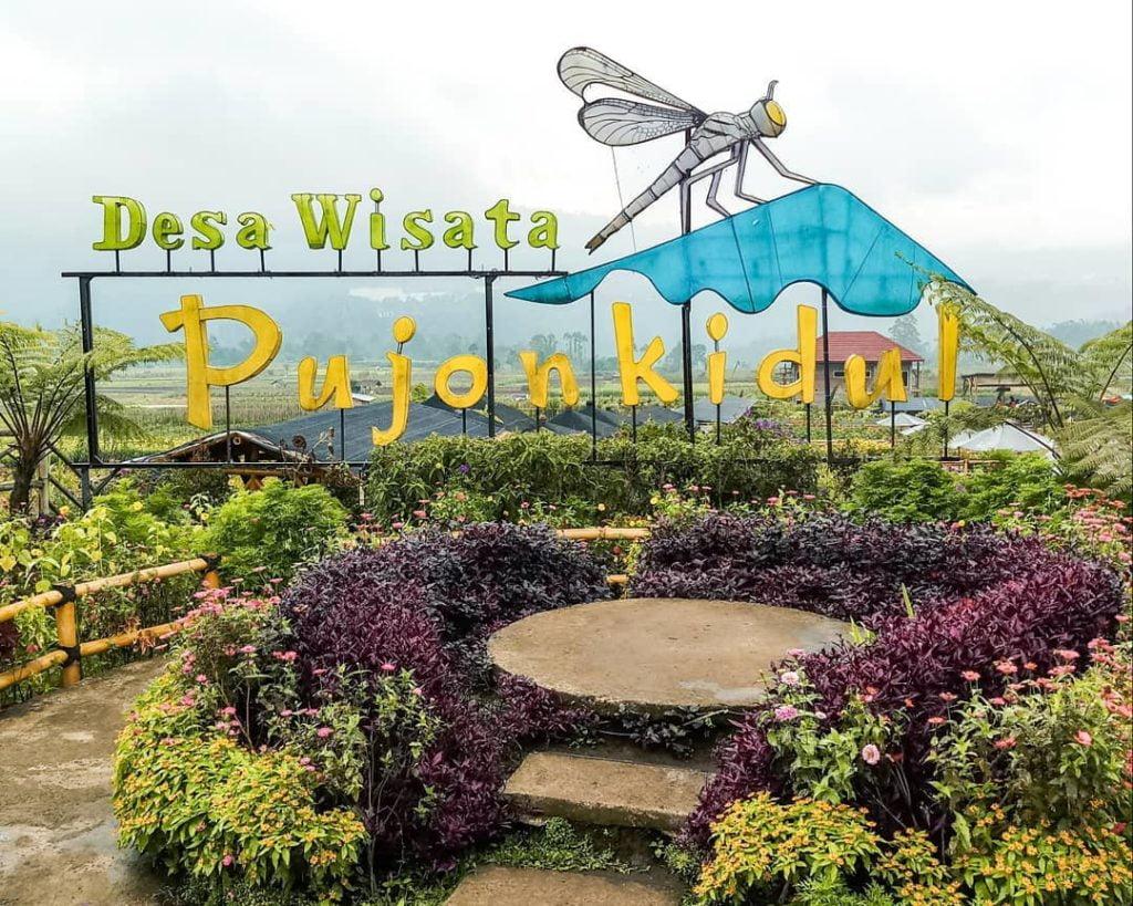 Wisata Desa Yang Mempesona Pujon Kidul Malang Go Trip Indonesia