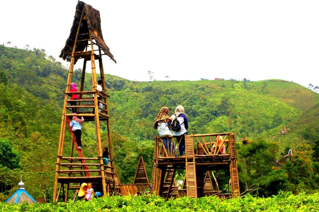 Wisata Kebun Teh Kemuning. Sumber: dakatour.com. Kebun Teh di Indonesia